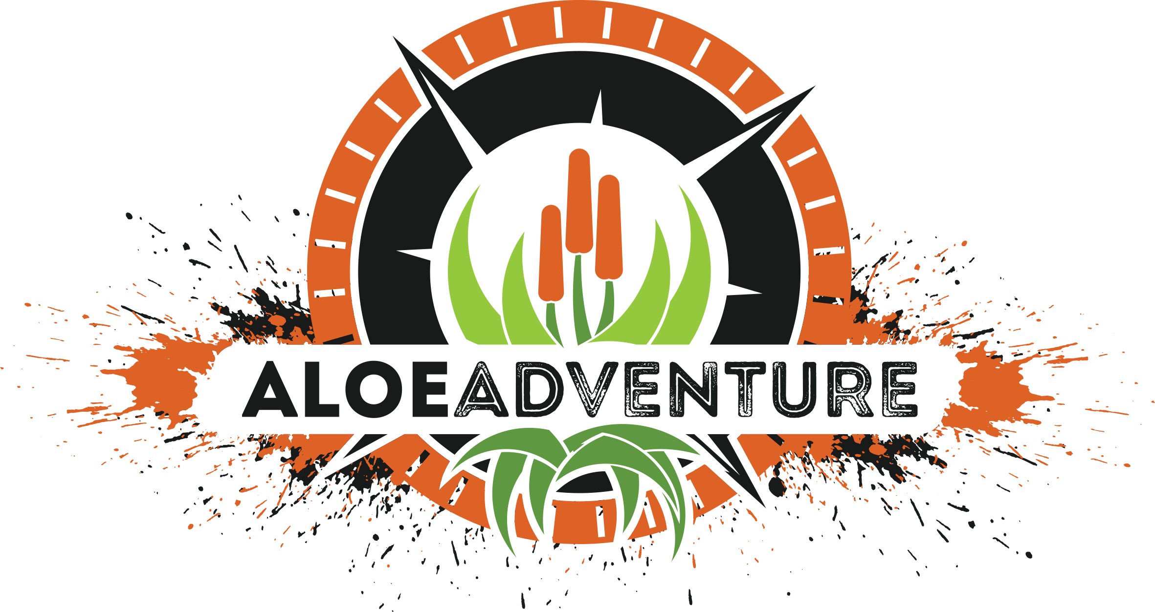 Aloe to Adventure